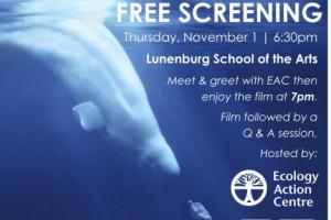 News & Events - Lunenburg School of the Arts