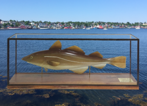 'Cod' by Ron Hall. Carved butternut (white walnut) and acrylic. Leaded & black walnut case.