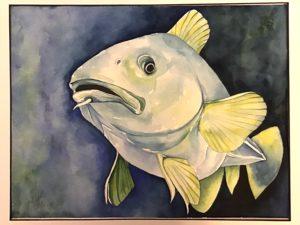 "'Cod Fish' watercolour by Judith Orr (10.5"" x 14"")."
